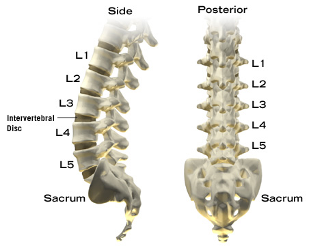 l2 l3 retrolisthesis The l2 l3 disc herniation is a relatively uncommon occurrence of a lumbar disc herniation which happens in the upper region of the lumbar spine the lumbar.